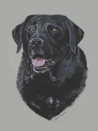 Portrait of Albert