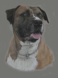 Portrait of Busta