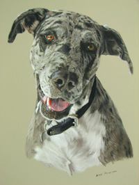 Portrait of Jess
