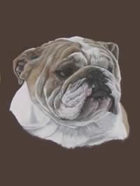 Portrait of Louie