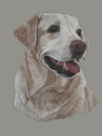 Portrait of Silver